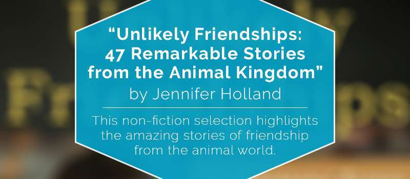 """Unlikely Friendships: 47 Remarkable Stories from the Animal Kingdom"""