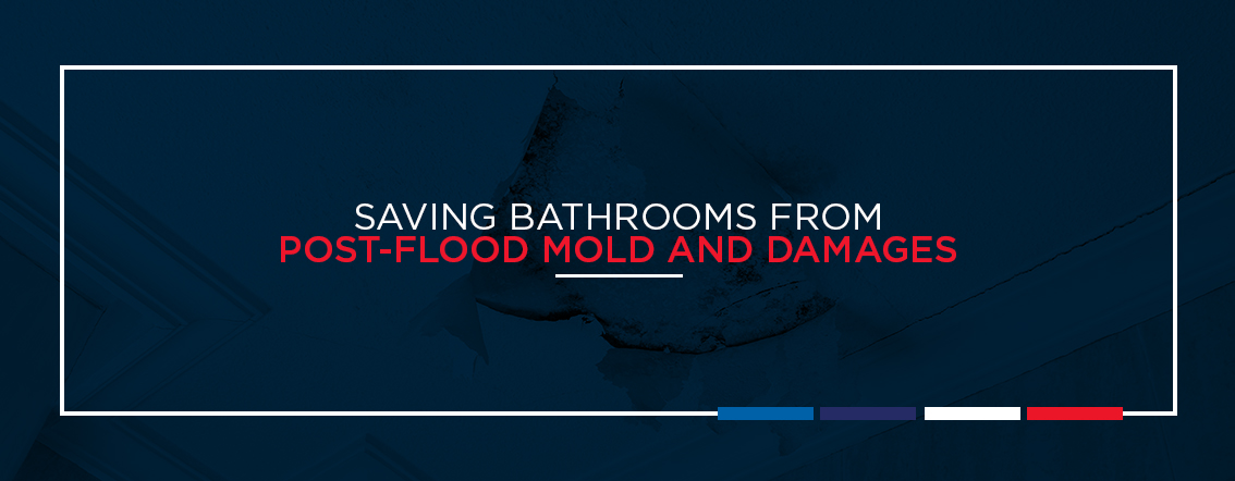 Saving bathrooms from post flood mold and damages